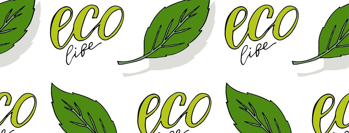 Guide to Eco-Friendly Packaging